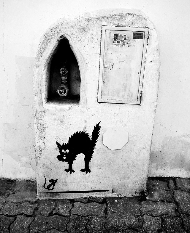 Ada Wanders/Włóczykijada. Street Art in Lagos. Monochromatic terrified cat with a mouse.