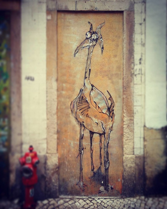 Ada Wanders/Włóczykijada. Street art: picture of the ostrich on the wall in Lisbon.